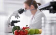 Engenharia de alimentos- O que é, faculdades e mercado de trabalho
